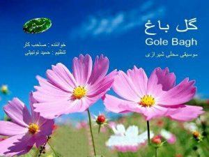 photo_2018-11-09_10-05-06-300x225 دانلود آلبوم شیرازی محسن صاحبکار به نام گل باغ