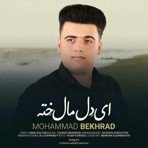 photo_2020-08-13_10-36-25-300x300 دانلود آهنگ لری جدید محمد بخرد به نام ای دل مال خته