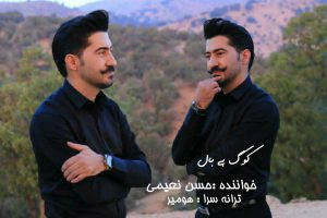 photo_2021-09-05_14-05-23-300x200 دانلود آهنگ لری جدید حسن نعیمی به نام کوگ بی بال